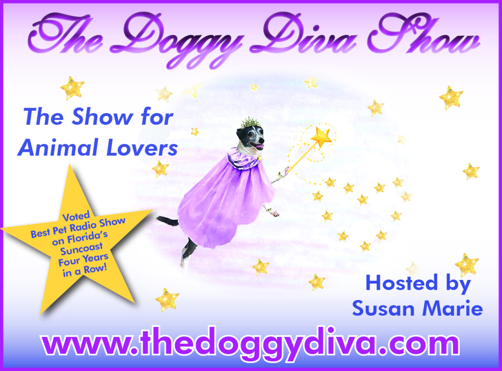 Speak up talk radio network the doggy diva show - The diva series ...