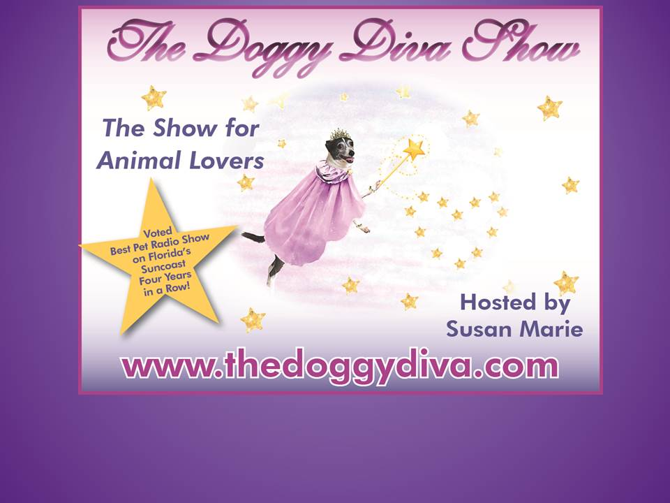 THE DOGGY DIVA SHOW