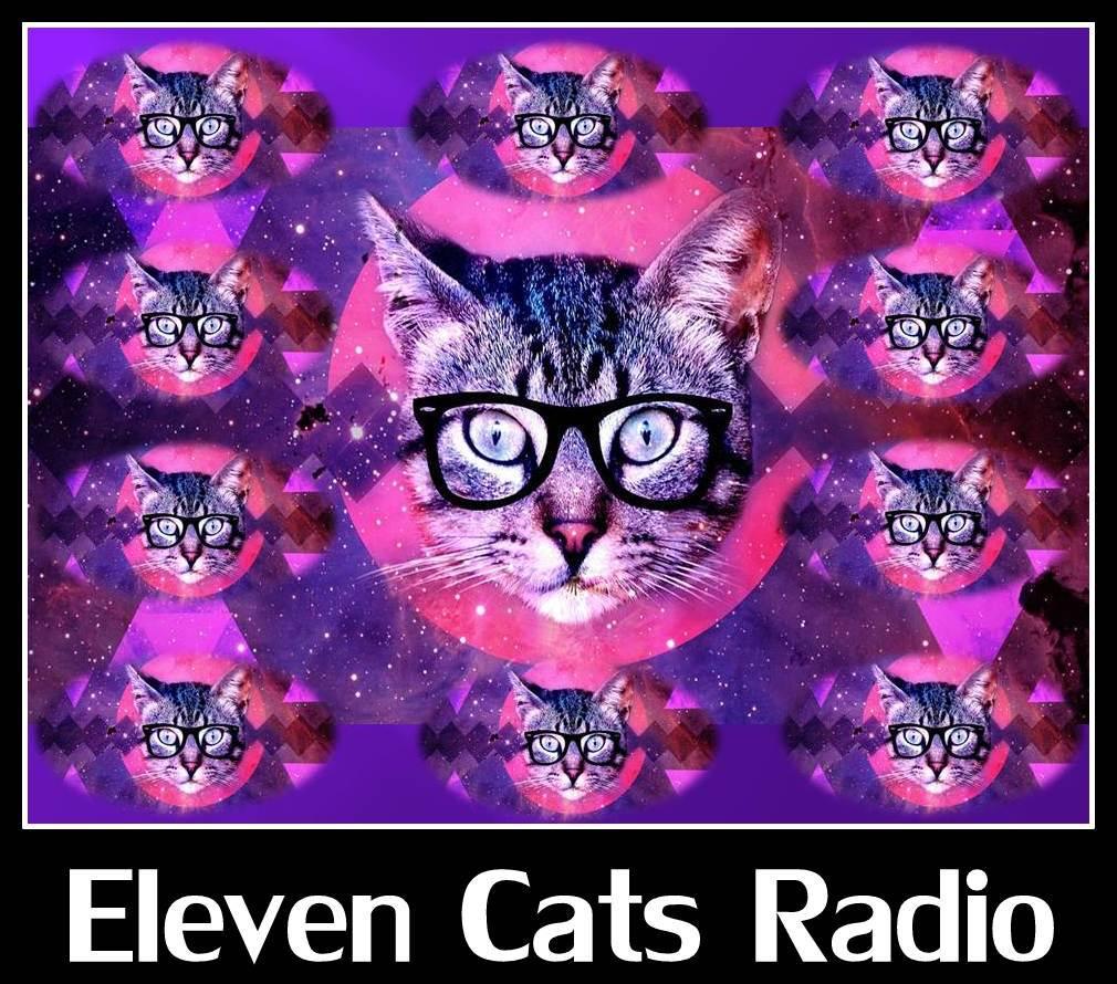 ELEVEN CATS RADIO